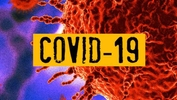 COVID-19: Half-million infected worldwide as economic toll rises