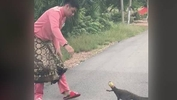 Man rescues monitor lizard, becomes internet hero